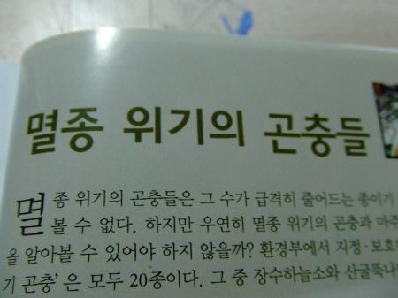 크기변환_dkdkdkdkdk아아아아DSCF1056.JPG