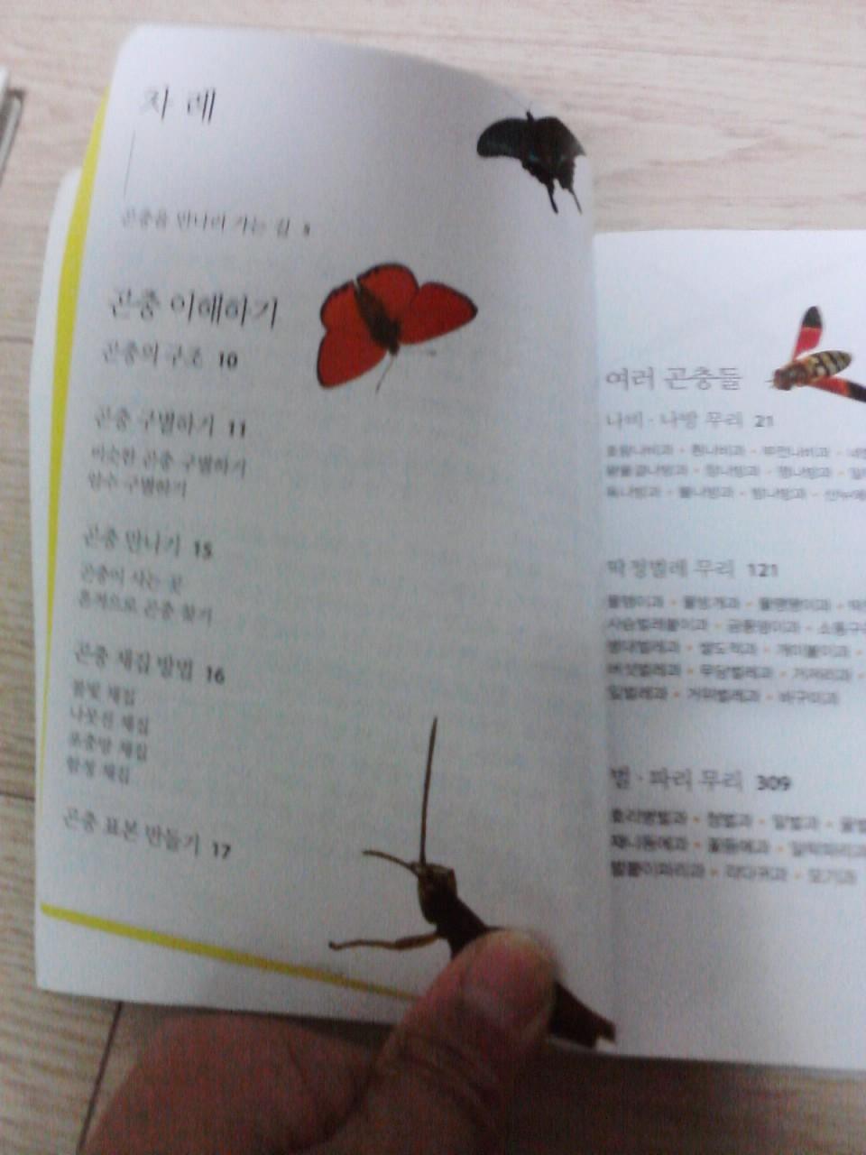 사진131129_004.jpg