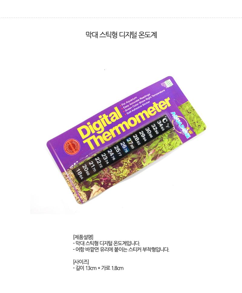 digital_thermometer[0].jpg